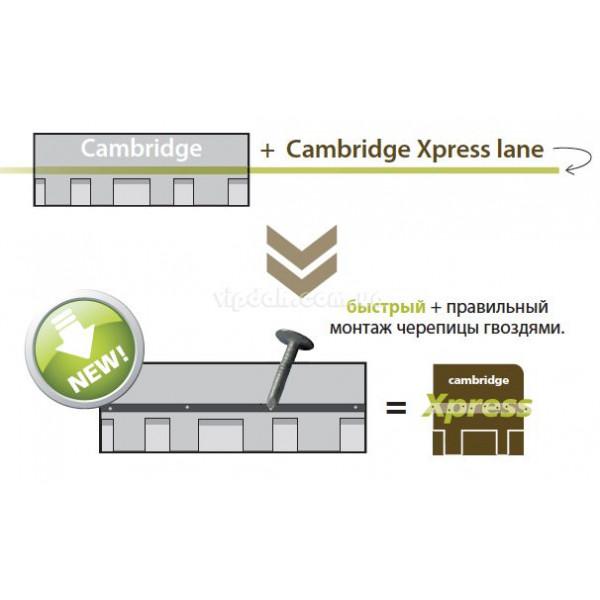 Битумная черепица IKO Cambridge Xtreme