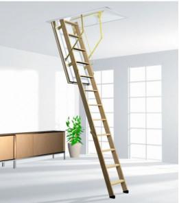 Лестница ROTO CADET 3 NORM