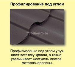 arad1_ru1